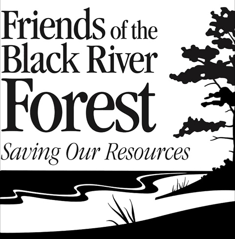 Friends of the Black River Forest